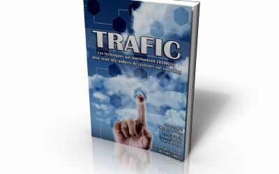 Les meilleures techniques pour obtenir du trafic sur votre site: LE LIVRE GRATUIT